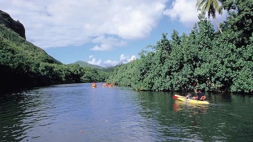 people in kayaks paddling down river in Kauai