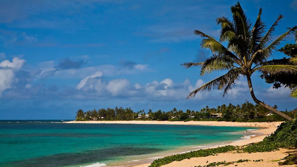 Show item 5 of 9. Sunset beach in Oahu