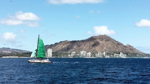 Catamaran travels past buildings on Oahu