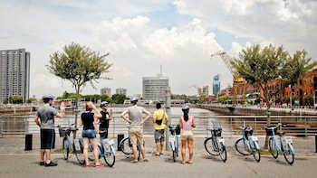 Ultimate Full-Day City Bike Tour with Lunch & Mate Ritual