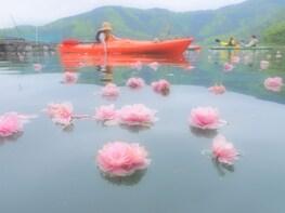 Kayaking Nature Tour of Lake Biwa and Sugaura Village, Shiga