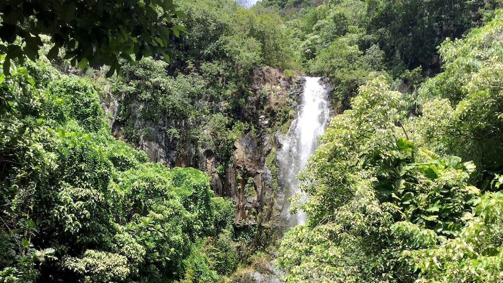 Show item 5 of 10. Waterfall in Hana