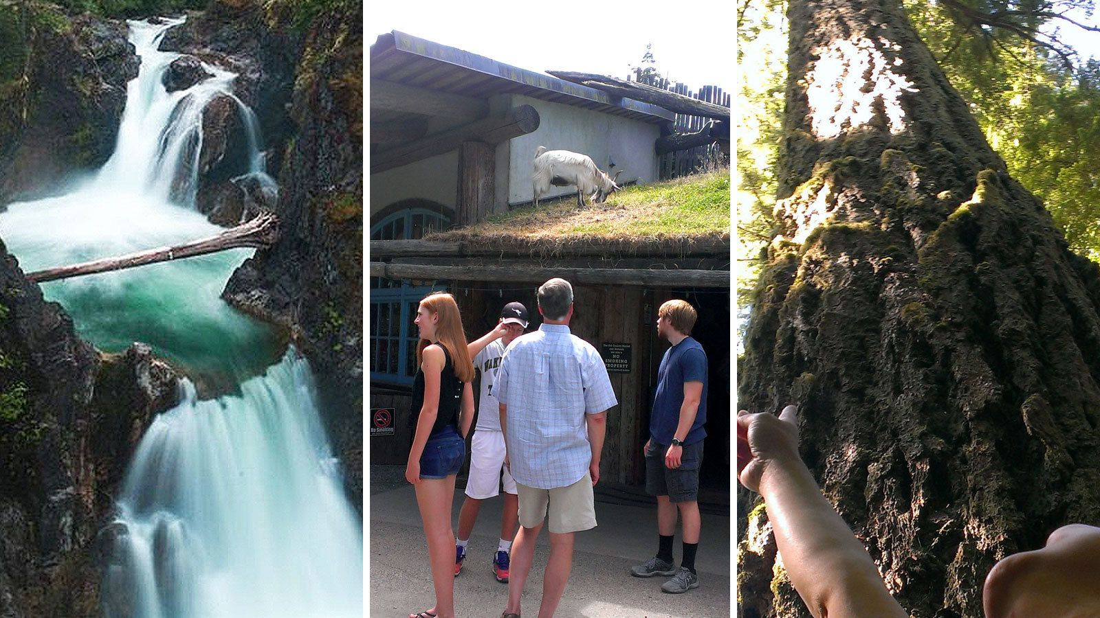 Combo images of attractions in Victoria