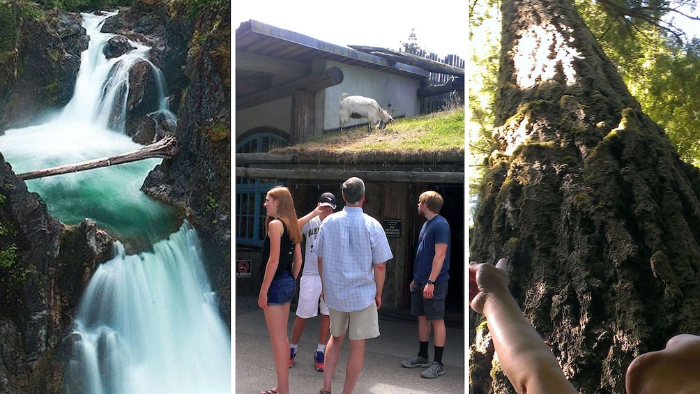 Show item 3 of 4. Combo images of attractions in Victoria