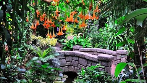 Water Garden in Victoria, British Columbia