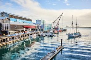 New Zealand Maritime Museum biglietti