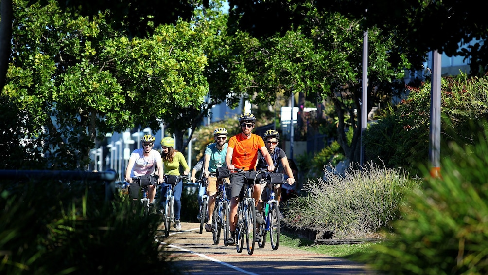 Bicycle tour group rides down sidewalk in Brisbane