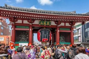 Tokyo Half-Day Sightseeing Bus Tour (AM)