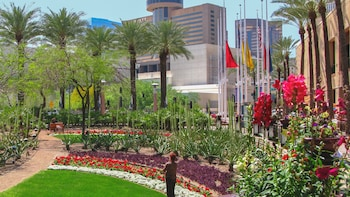Phoenix and Scottsdale City Highlights Tour