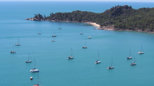 Aerial view of Palm Island with several boats at sail.