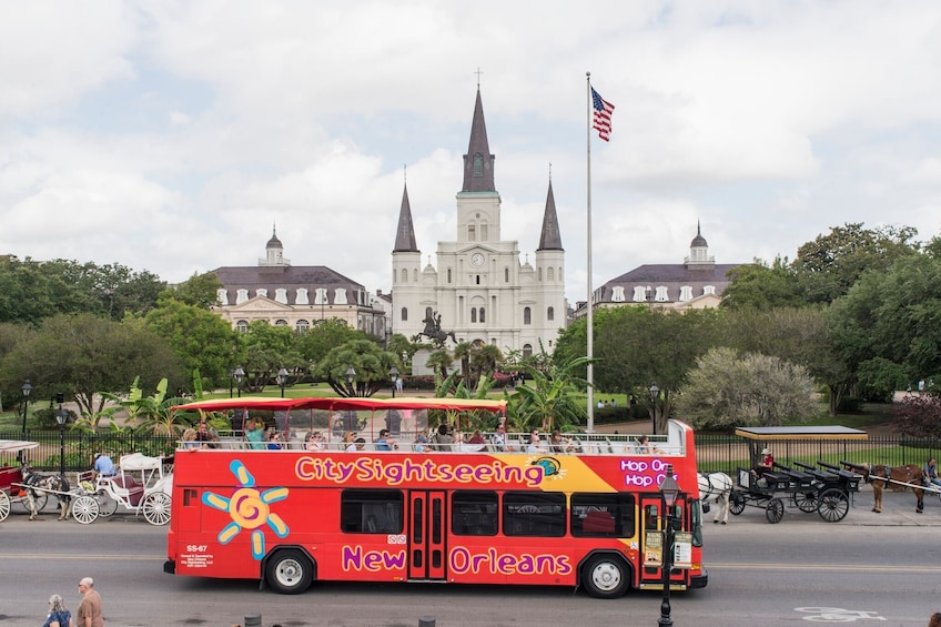 Show item 3 of 8. New Orleans Shore Excursion: Hop-On Hop-Off Bus Tour