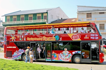 Panama Shore Excursion: Hop-On Hop-Off Bus Tour