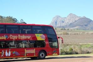 Excursión de la costa de Ciudad del Cabo: pase de turibús