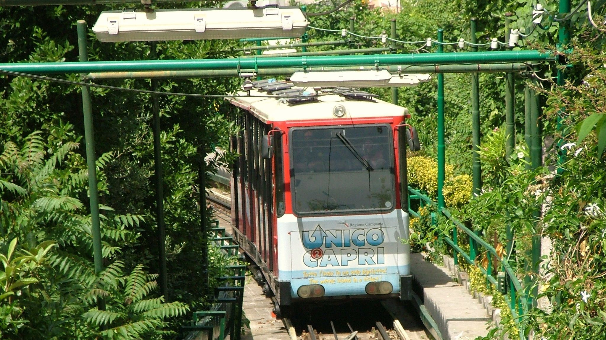 Capri beach trolley passing through forest area.