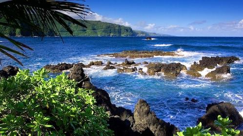 Shoreline on the Hana tour in Maui