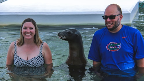 Sea lion socializing with couple in the water.