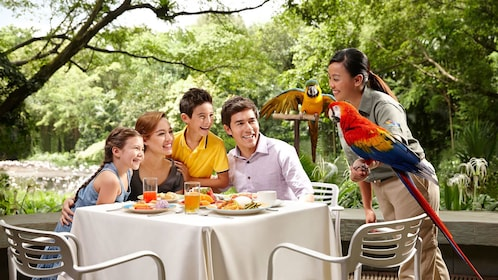 family dining outdoors with parrots nearby in Singapore