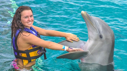 Young woman interacting with dolphin in water.