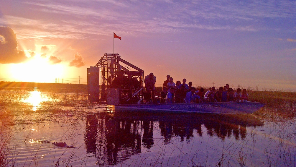 Airboat tour of Everglades