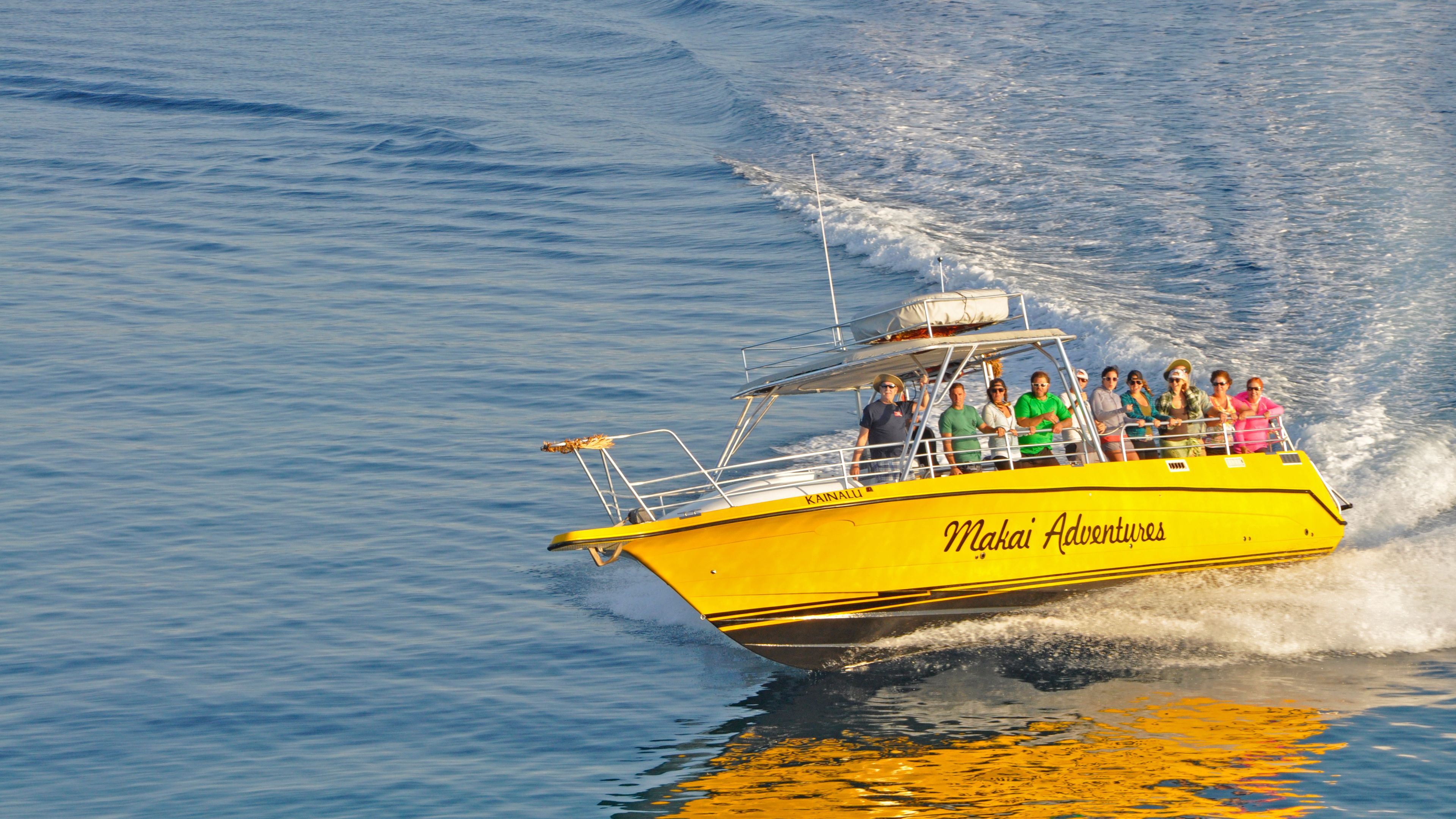 yellow boat for whale watching