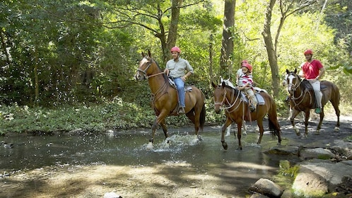 Group Horseback Riding in Costa Rica