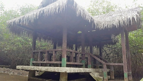 Hut on the Churute Mangroves tour in Guayaquil, Ecuador