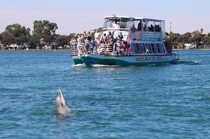 Mandurah Dolphin & Scenic Canal Cruise