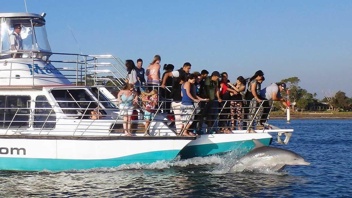 Dolphin & Scenic Canal Cruise in Perth, WA, Australia