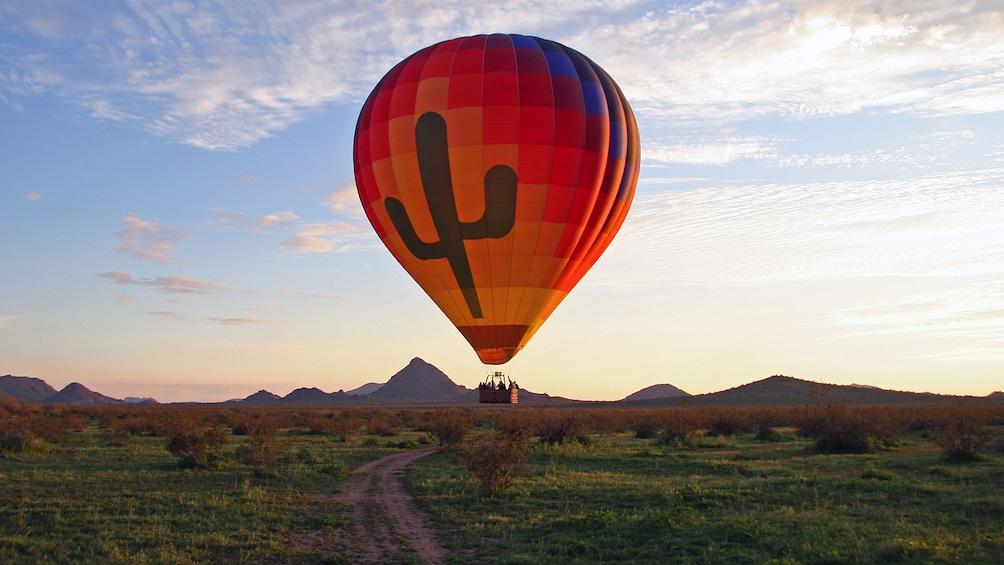 Show item 1 of 10. hot air balloon