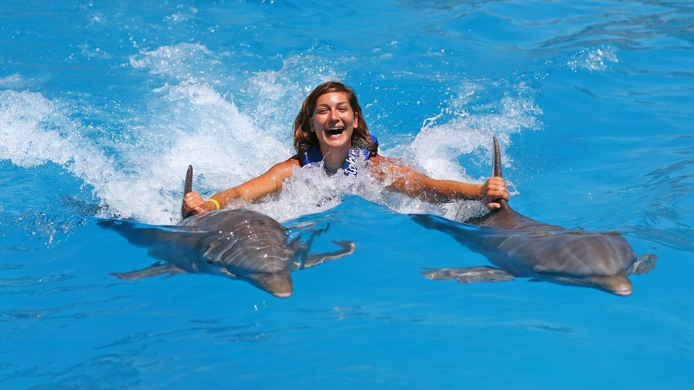 Show item 3 of 10. woman getting carried across the pool by dolphins in Panama City