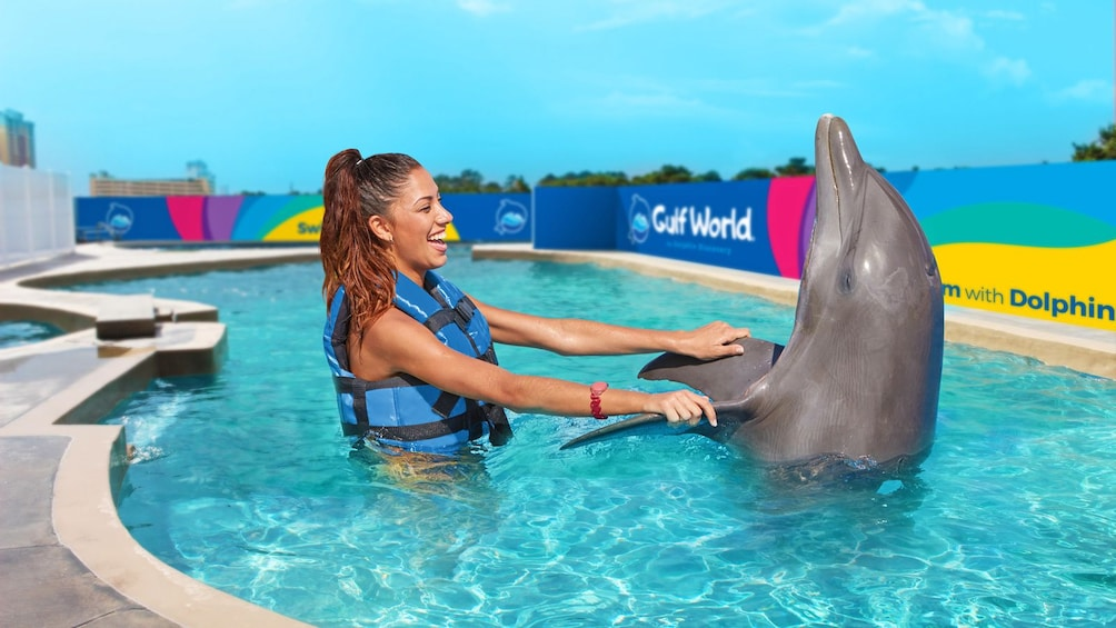Show item 5 of 10. woman holding a dolphin's flippers above water in Panama City