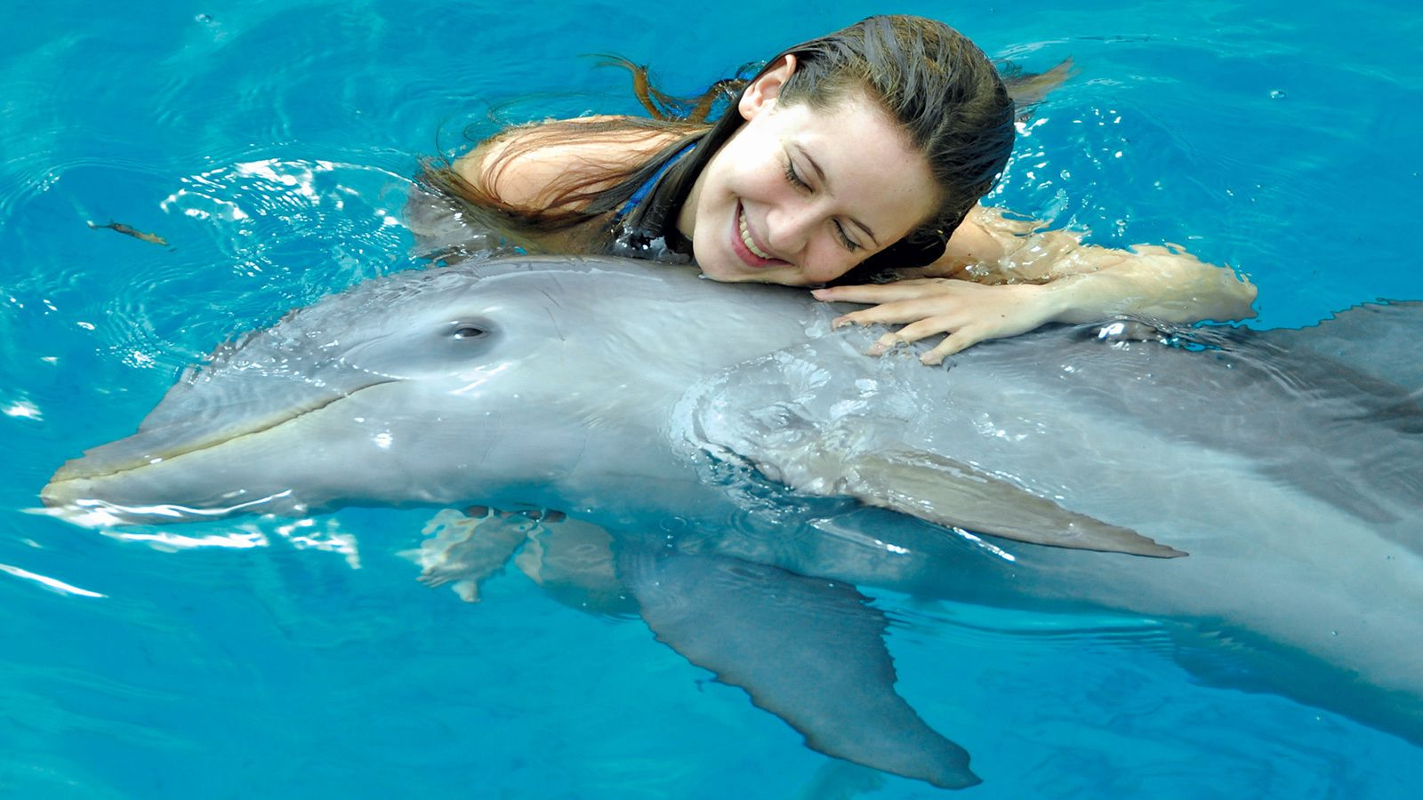 girl hugging a dolphin in the pool in Panama City