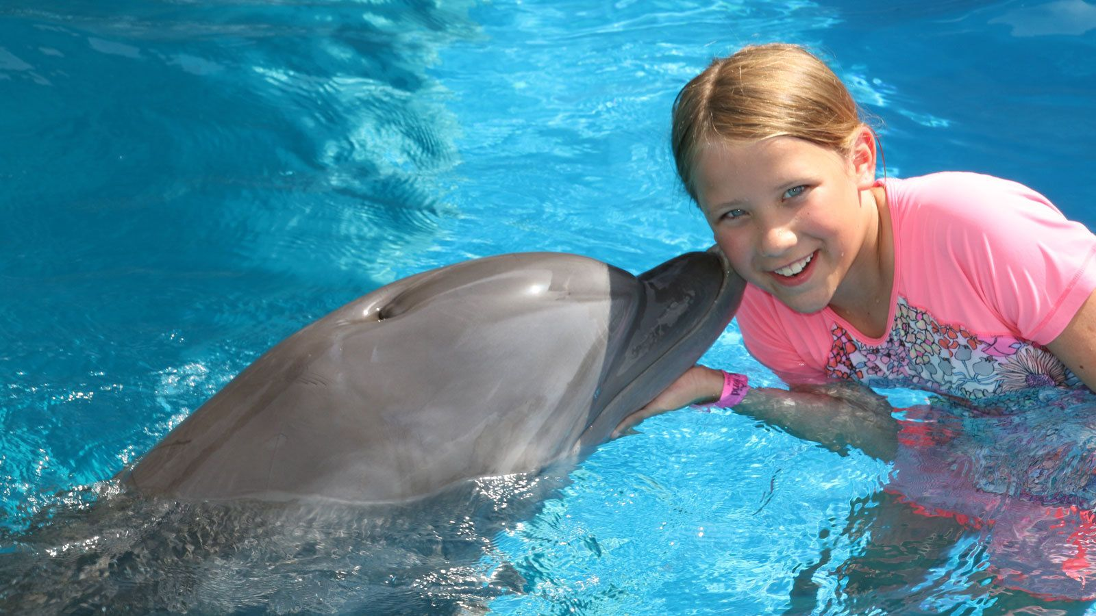 dolphin giving a little girl a peck on the cheek in Panama City