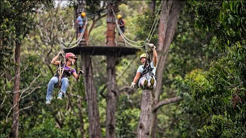 Two people ziplining side by side in Hawaii