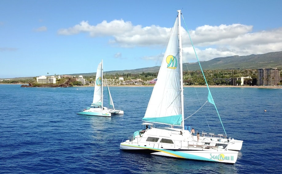 Show item 4 of 10. Half Day Lanai Snorkel & Whale Watch from Ka'anapali Beach