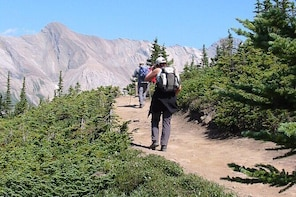 3-Day Hike and Dine in Jasper from Edmonton with Accommodation