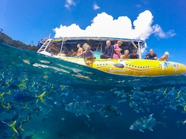 Northern Whitehaven Beach Tour with More Snorkelling Time