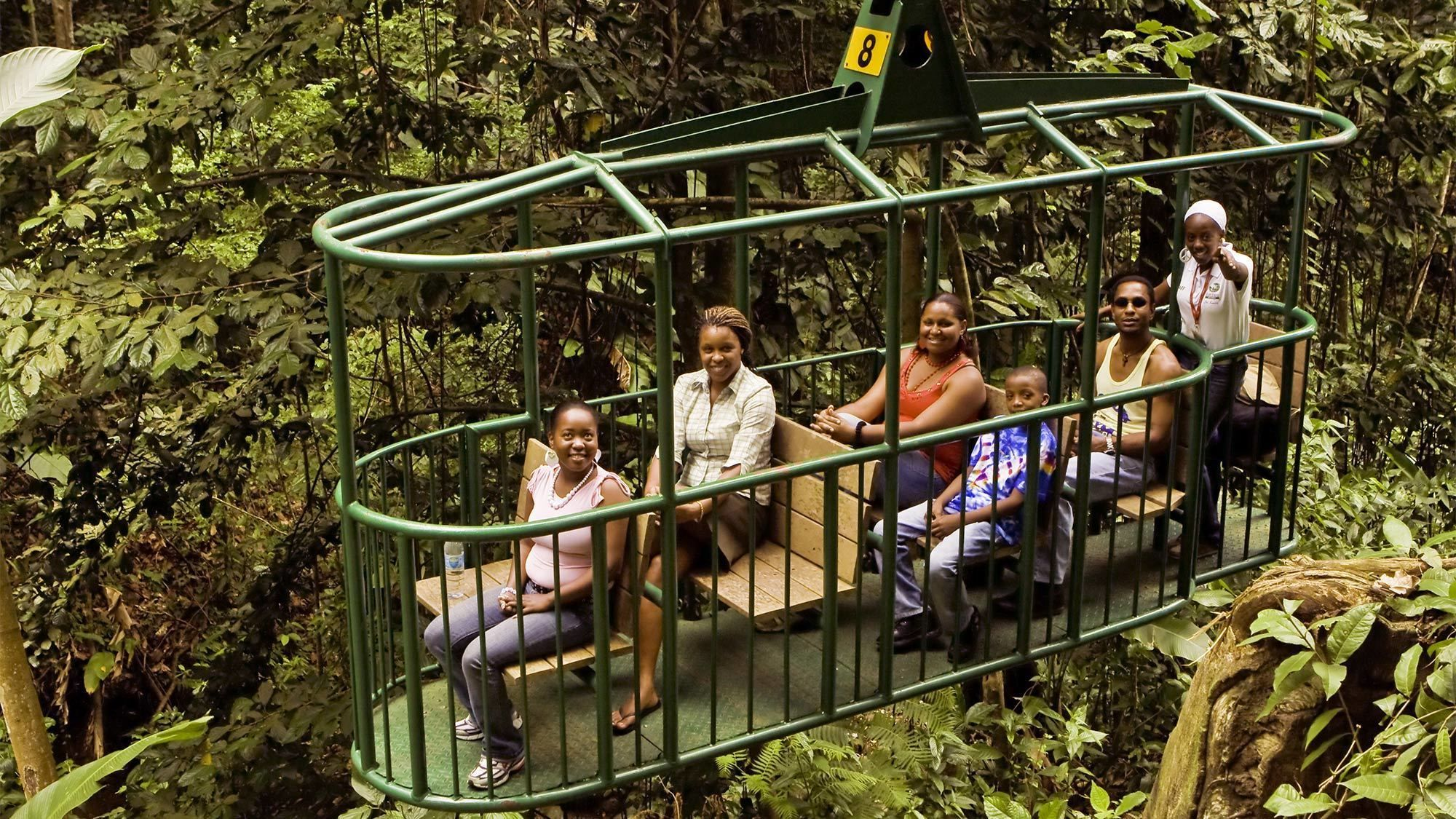 Aerial Tram Tour with Nature Walk