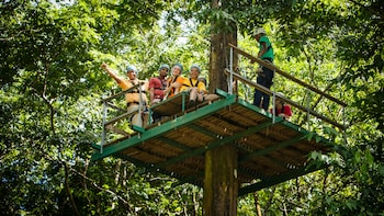 Ultimate 3 Rainforest Adventure; Hike, Tram Ride & Zip line