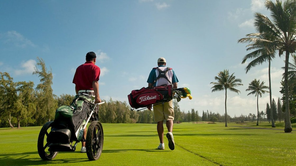 Carregar foto 5 de 5. Enjoy the tropical weather and the ocean breeze at George Fazio Golf Course at Turtle Bay