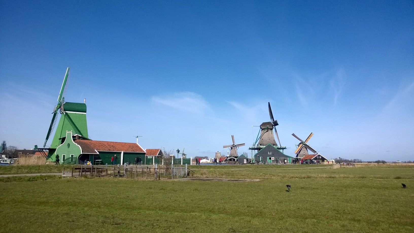 Windmills in Zaanse Shans