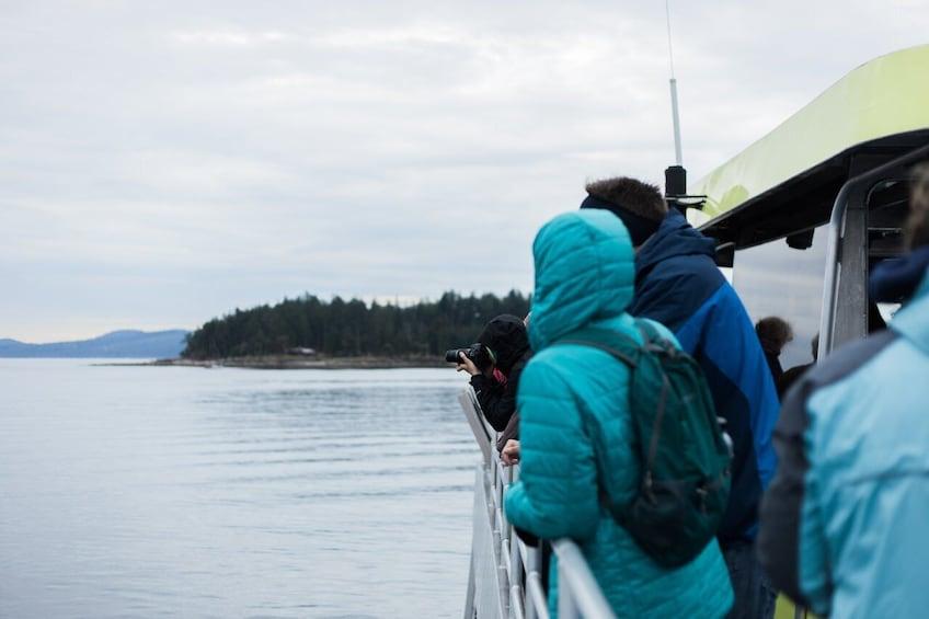 Cargar ítem 4 de 10. Half-Day Whale Watching (Vancouver, BC)