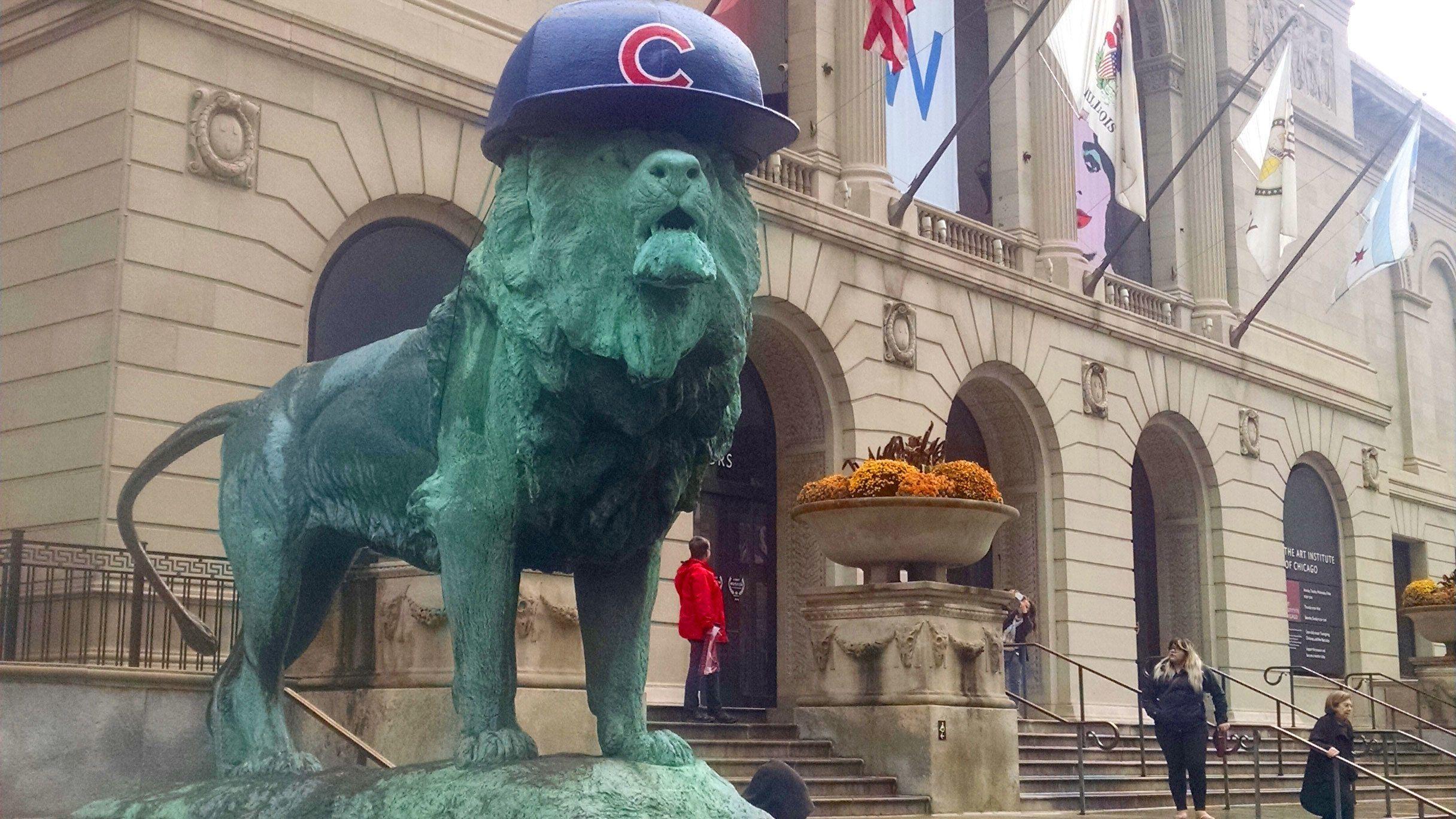 Lion wearing Cubs helmet in Chicago