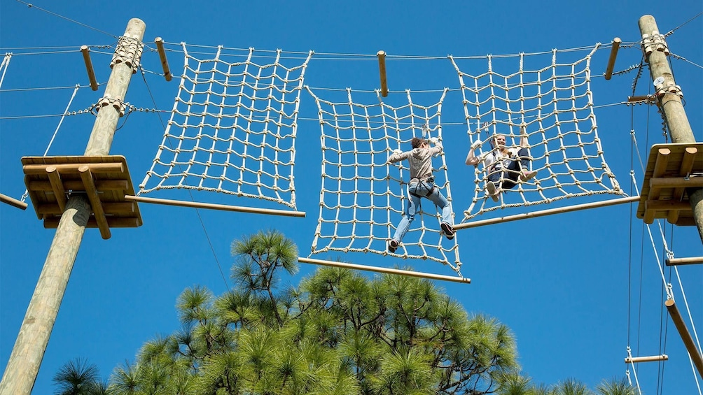 Show item 1 of 5. Guests having fun on the TreeUmph Adventure Course in Sarasota Area, FL