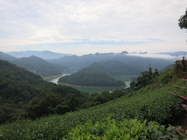 Thousand Island Lake, Bagua Tea & Pinglin Tea Museum Tour