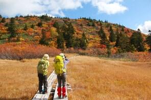 Guided Trekking Tours of Aomori's Hakkoda Mountains
