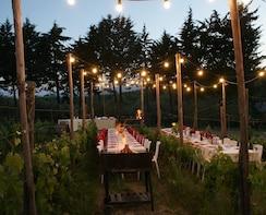 Abendessen in den Chianti-Weinbergen mit Weinverkostung