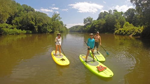 Group on the French Broad River SUP Adventure in North Carolina Central