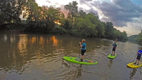 Group having fun on the Group on the French Broad River SUP Adventure in North Carolina Central