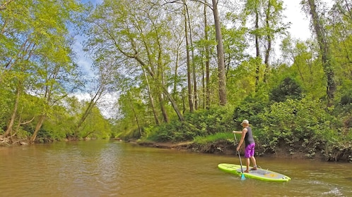 View of the French Broad River stand up paddle boarding activity